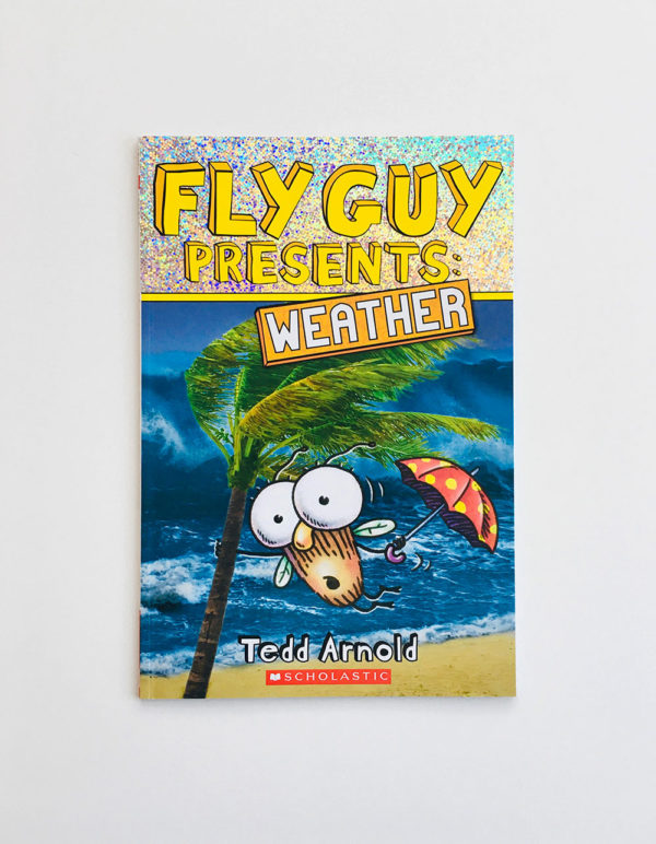 FLY GUY PRESENTS WEATHER
