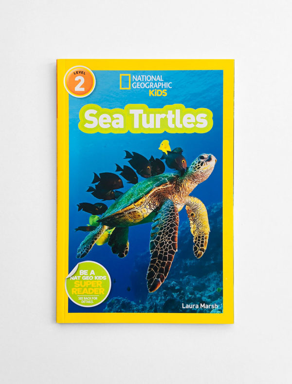 NAT GEO #2: SEA TURTLES