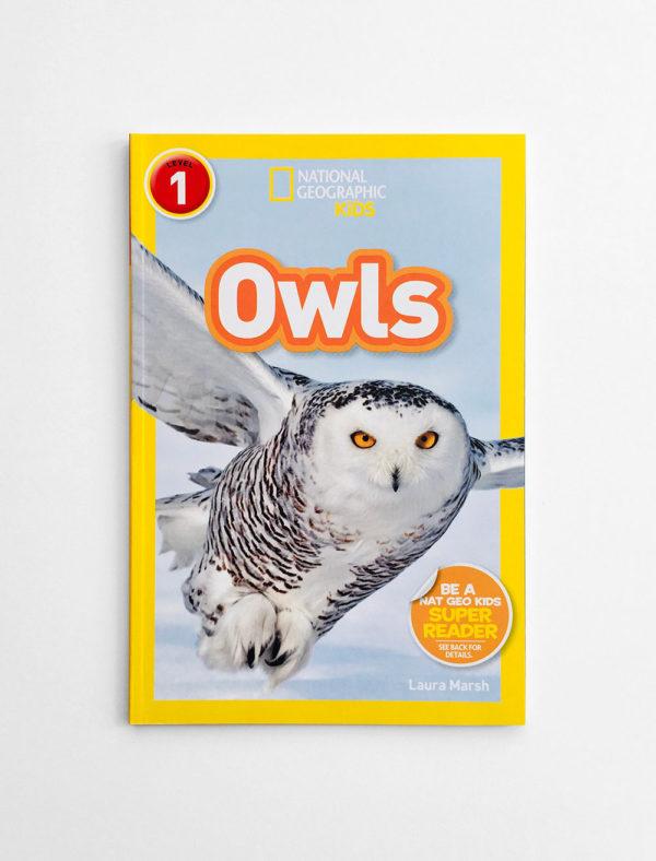 NAT GEO #1: OWLS