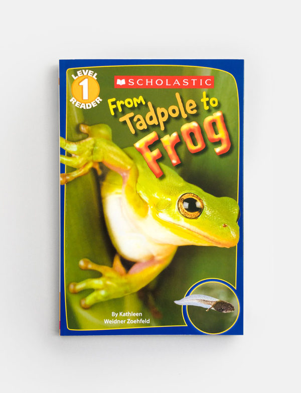 SCHOLASTIC READER #1: FROM TADPOLE TO FROG